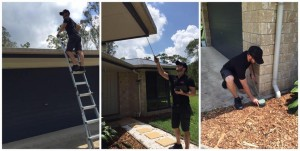 building inspection sunshine coast
