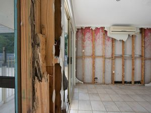 Buderim House Destroyed by Termites